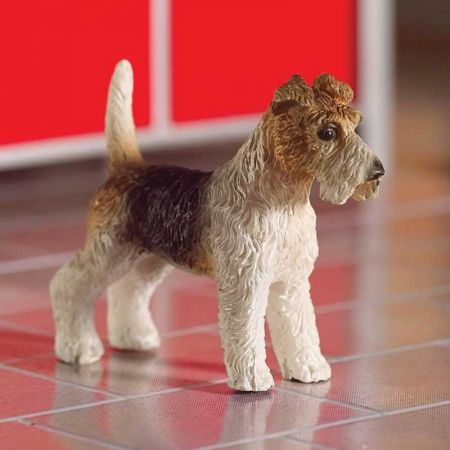 Tommy the Fox Terrier Dog