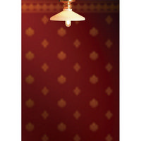 Short DollsHouse Ceiling Light with Coolie Shade