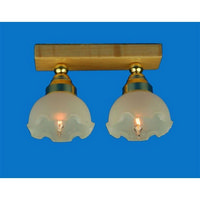 Ceiling Light with Twin Fluted Shades